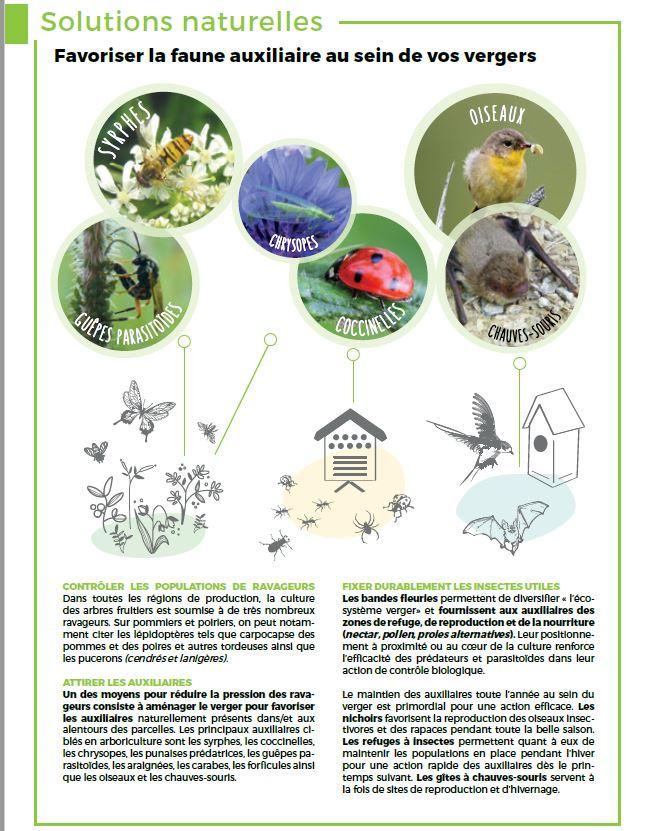 faune auxiliaire vergers bios diversité