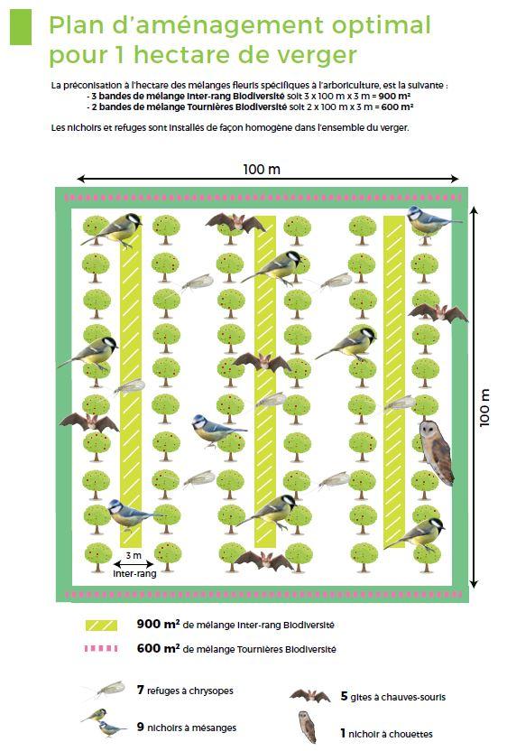 aménagement verger biodiversité