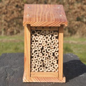 Gîte refuge abeille sauvage